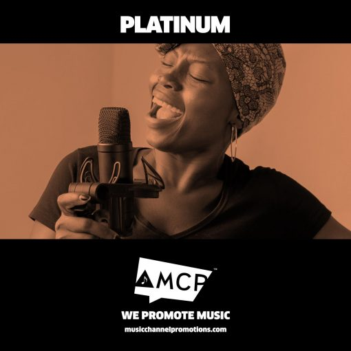 Platinum Promo Package - Music promotion by MCP - Shop Product