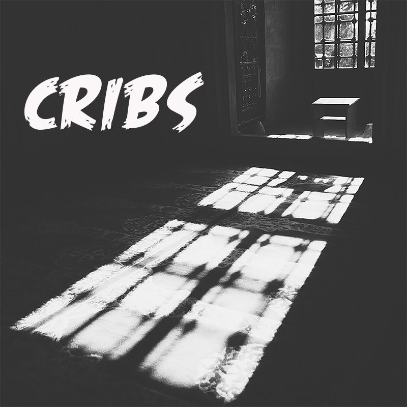 cribs an Rap Playlist by musicchannelpromotions.com Hip Hop and rap curator indie panel on spotify